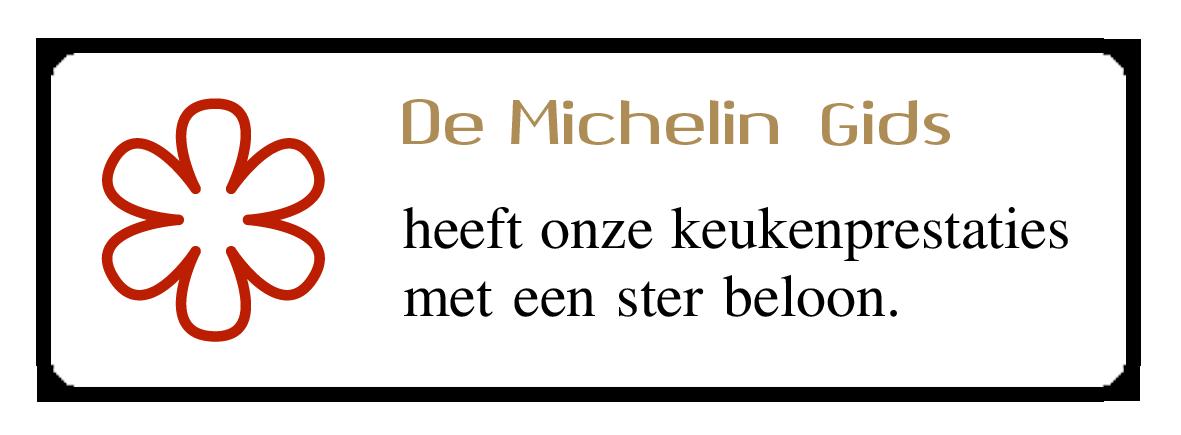 michelin_stern_de